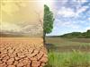 氣候偏離與綠色經濟