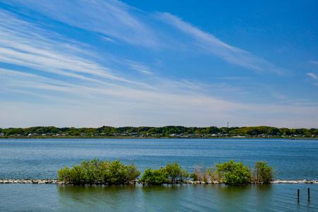 地方創生-日本霞浦湖從死湖到群鳥聚集的傳奇