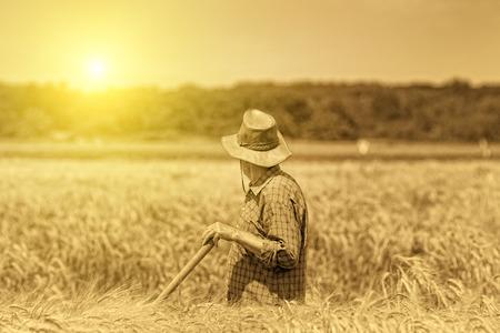 農村高齡者學習的障礙及建議