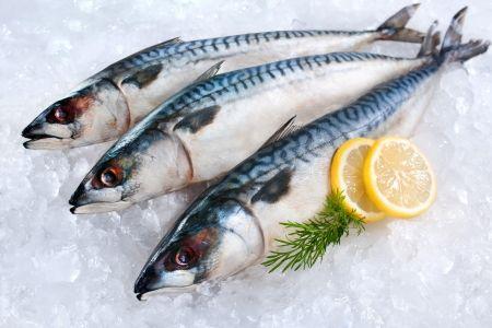 食品製造業向服務化轉型  賦予「鯖魚」新商業價值