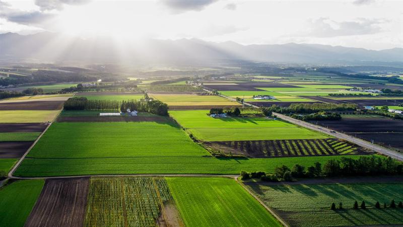 農業發展新趨勢-北海道更別村