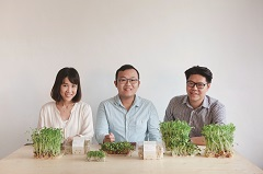 綠藤生機》讓芽菜「活著」上桌